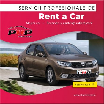 Professional car rental services
